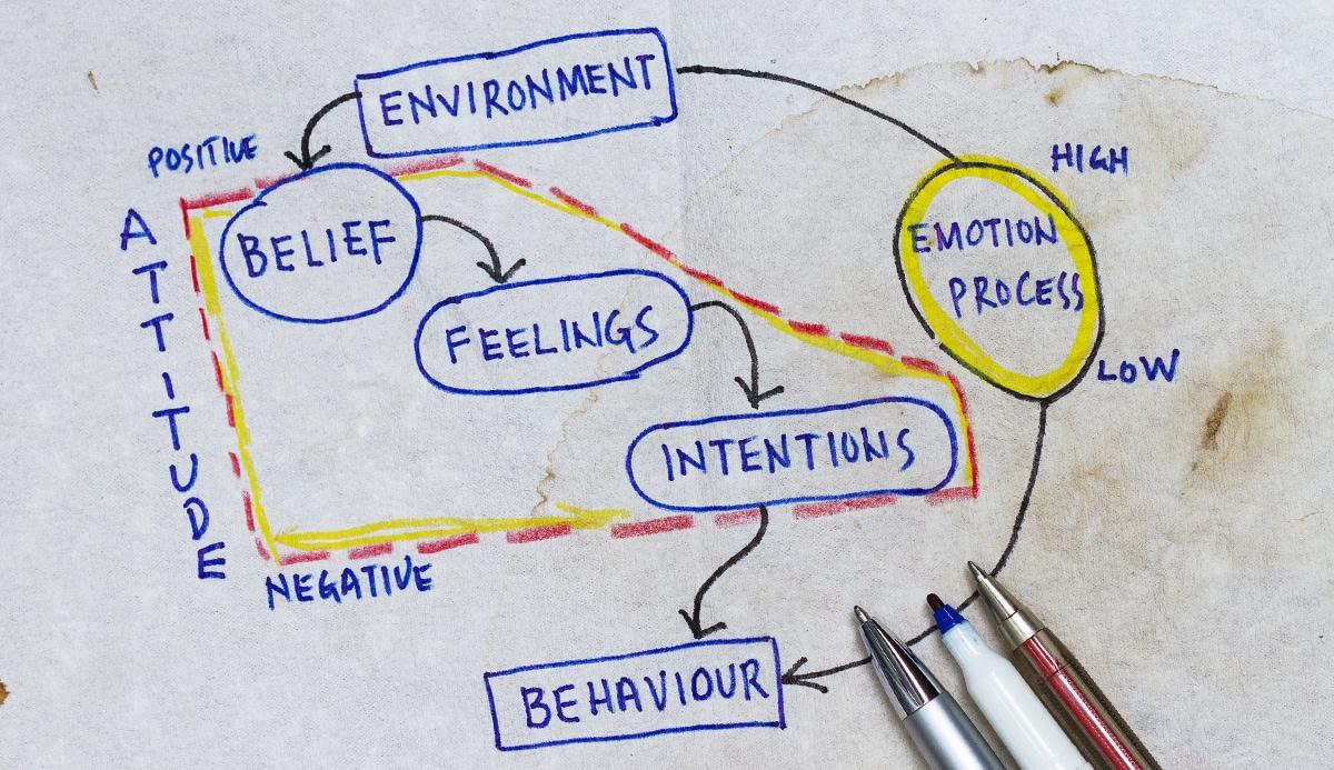 Belief, feelings, intentions, behaviour